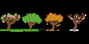 seasons-158601__180
