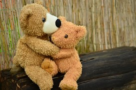 teddy-1113160__180