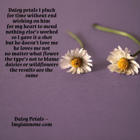 daisy-petals-1-5a875610b2629