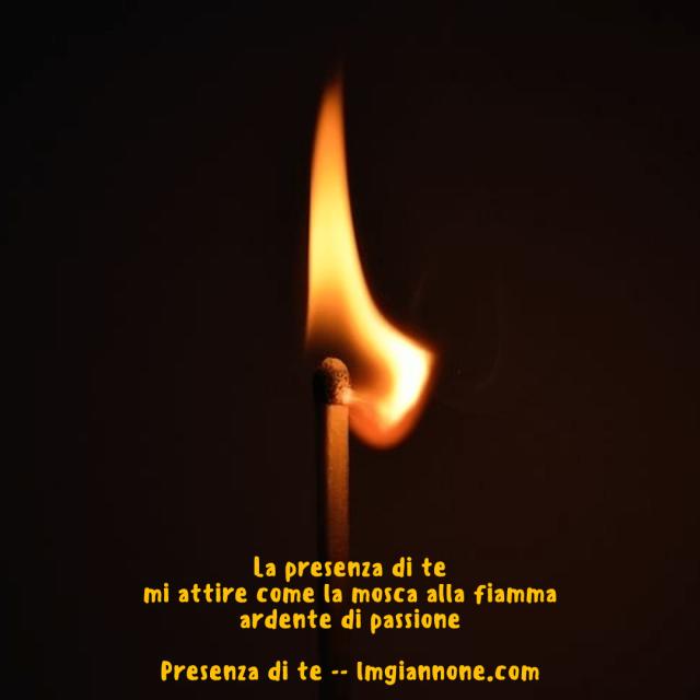 presenza-di-te-1-5a6655830f598