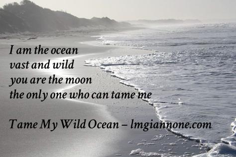 Tame My Wild Ocean