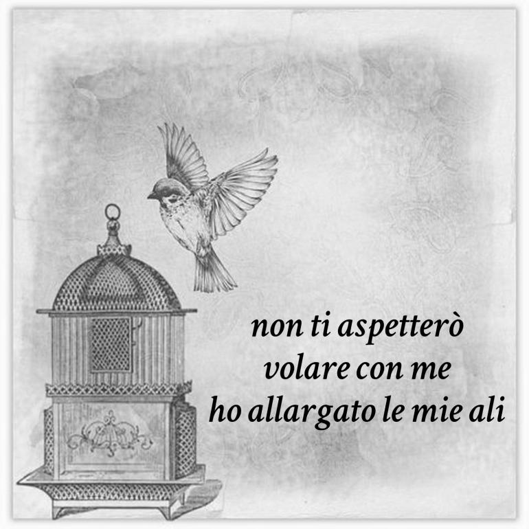 italian-wings-ali