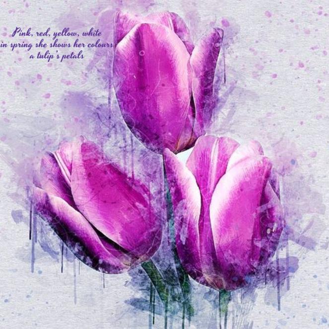 seasonal-haiku-tulip1