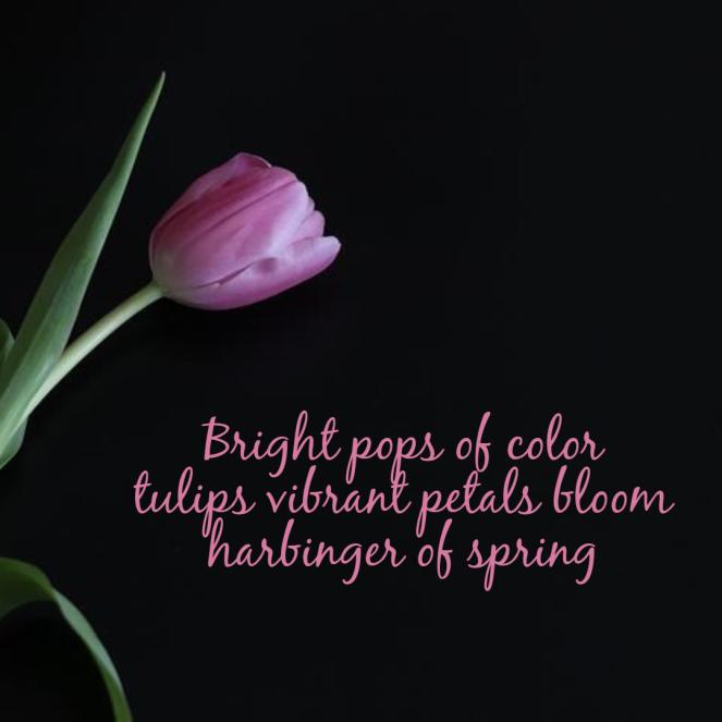 seasonal-spring-haiku-tulip2-1-60413cb699e9b