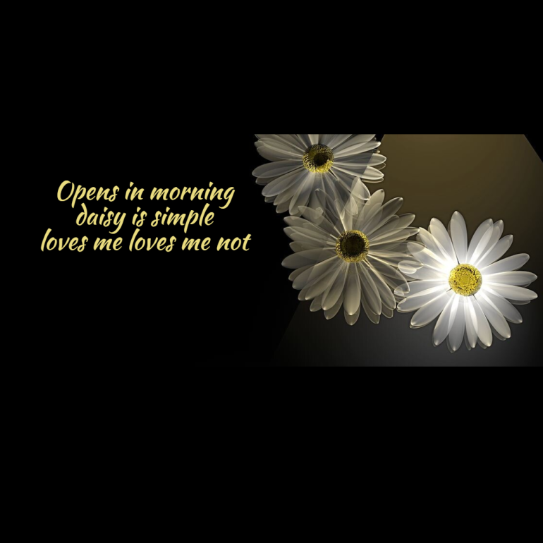 seasonal-haiku-daisies1-1